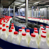 Модульный цех по переработки молока 1000 л/сутки